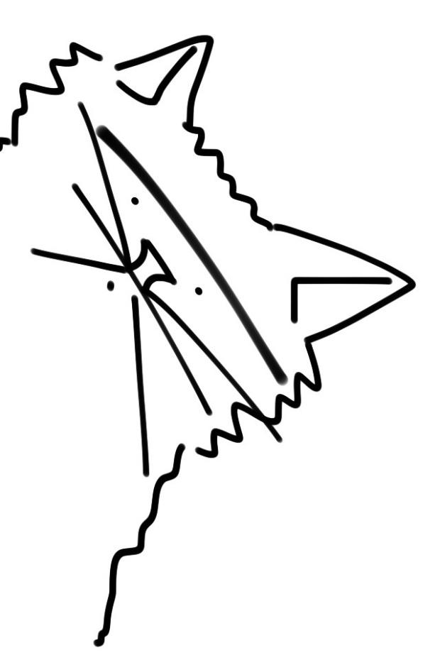 20150423-230359.jpg